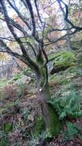 Image for Rita - Glenridding, Cumbria