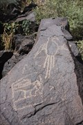 Image for Petroglyphs -- Petroglyph Natl. Mon, nr Albuquerque NM