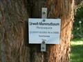 Image for Mammutbaum Arboretum HFR, Rottenburg, Germany, BW