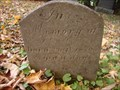 Image for Pioneer Cemetery 1810 -1967: MacIntosh Family
