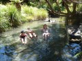 Image for Wairua Stream Hot Pools -- Lake Tarawera, Bay of Plenty, New Zealand