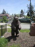 Image for Colfax Bear - Colfax, CA