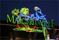 Image for Margaritaville - ArtisticNeon -  Orlando, Florida, USA.