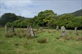 Image for Lochbuie Stone Circle - Isle of Mull, Scotland