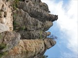 Image for Catedral Spires and Limber Pine Natural Area - Custer State Park (South Dakota) USA