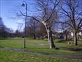 Image for Silver Jubilee Tree, Tavistock, Devon UK