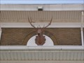 Image for Elk Lodge No 1208 - Lawrenceville, Illinois.