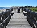 Image for Natural Bridges State Beach Boardwalk - Santa Cruz, CA