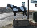 Image for Lakeport Blvd Horse - Lakeport, CA