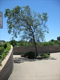 Image for Lone Tree Gate - Antioch, CA