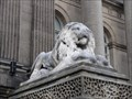 Image for 4 large lions guarding the town hall – Leeds, UK