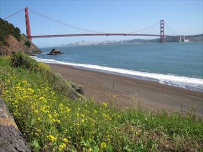 Spring Flowers, Kirby Cove, GG Bridge
