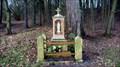 Image for Virgin Mary - Vlcice, Czech Republic