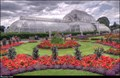 Image for Royal Botanic Gardens, Kew (London, UK)