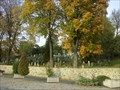 Image for židovský hrbitov / the Jewish cemetery, Velké Mezirící,  Czech republic