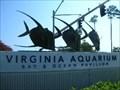 Image for Virginia Marine Science Museum