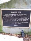 Image for Hanging Bog