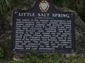 Image for Little Salt Spring - North Port, FL