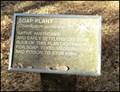 Image for Native Plants Orangevale Community Park