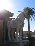 Image for Horse - Pacific Commons - Fremont, CA