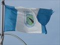 Image for Municipal Flag - Edson, Alberta
