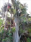 Image for Quail Gardens Treehouse  -  Encinitas, CA