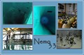Image for Nemo33 - Brussel - Belgium