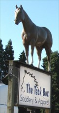 Image for DaVinci, Fiberglass horse in Corvallis, OR