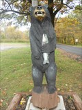 Image for Forest Park Bear - Camden, NY