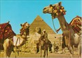 Image for Camel Driver near the Sphinx and Khafre Pyramid