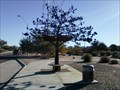 Image for The Iron Tree Bus Stop - Scottsdale, Arizona