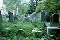 Image for Jewish cemetery - Golcuv Jenikov, Czech Republic