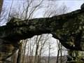 Image for Sewanee Natural Bridge