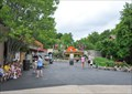 Image for Silver Dollar City