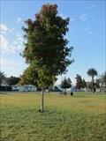 Image for Bill A Linane - Arroyo Grande, CA