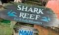 Image for Shark Reef at Typhoon Lagoon