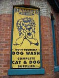 Image for Menagerie Pet Shop - Toronto, ON