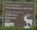 Image for Killarney National Park - County Kerry, Ireland