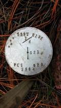 Image for T39S R13E 1/4 S21 'PLS 820' COR - Klamath County, OR
