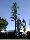 Image for Woman's Club Tower - Garden Grove
