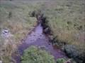 Image for ORIGIN - Allegheny River