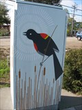 Image for Birds - Soquel, CA