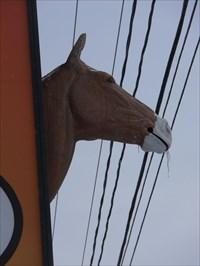 Photo de tête de cheval vers l'arrière de l'enseigne.Horse head photo to the back of the sign.