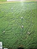Image for Milton Maze  - Rectory Farm