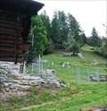 Image for Llama Farm Täsch - Wallis, Switzerland