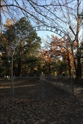 Image for Alligator Cemetery -- Baxter, Henderson Co. TX