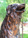 Image for Annie, the Railroad Dog - Fort Collins, CO