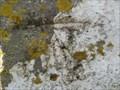 Image for Cut Mark - St Aldhelm's Chapel, St Aldhelm's Head, Dorset