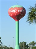 Image for Plant City Strawberry Water Tower