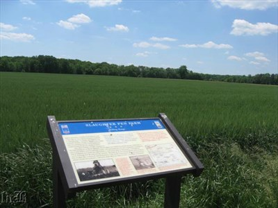 The Confederates zeroed in on a lone tree on the field to establish a `killing range`.